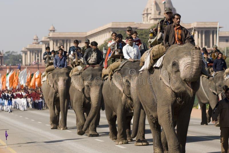 日大象游行共和国 免版税图库摄影