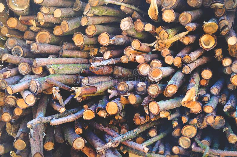 日志木头堆 库存照片