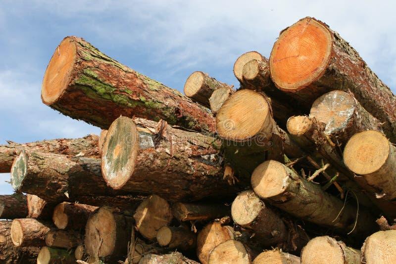 日志杉木木栈的木头 免版税库存照片