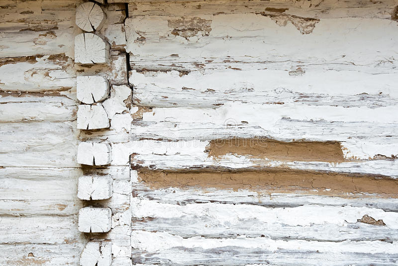从日志的木墙壁作为背景纹理 库存图片