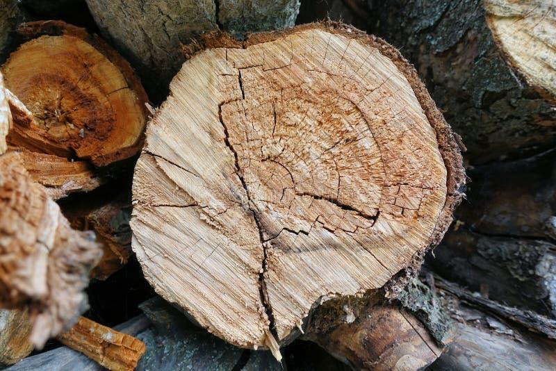 ?? 日志裁减 堆日志 堆木柴 为壁炉准备的日志裁减 woodpile 壁炉的木头 木头为冬天 库存照片