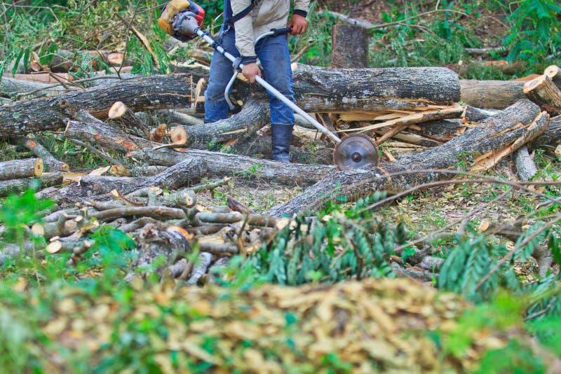 日志记录器人切开木头 免版税库存照片