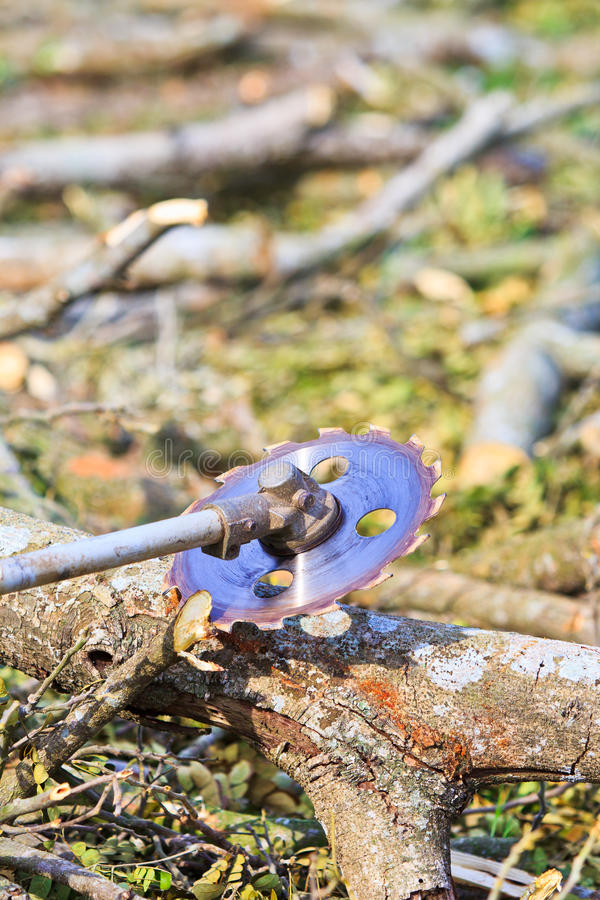 日志记录器人切开木头 库存照片