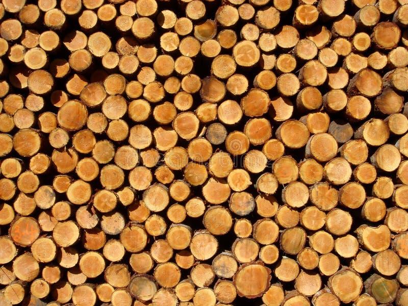 Download 日志 库存照片. 图片 包括有 森林, 日志, 抽象, browne, 砍伐, 橙色, 木头, 来回, 纹理 - 191204