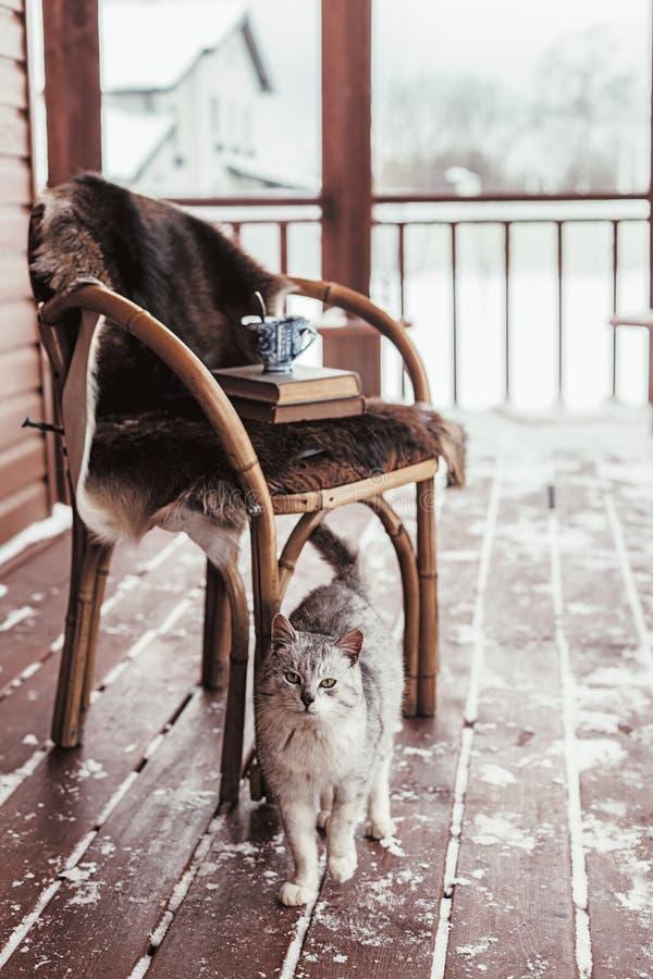 日志cabine门廊与雪的 库存图片