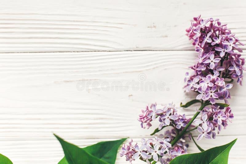 日愉快的母亲 在土气白色woode的美丽的淡紫色花 免版税库存照片