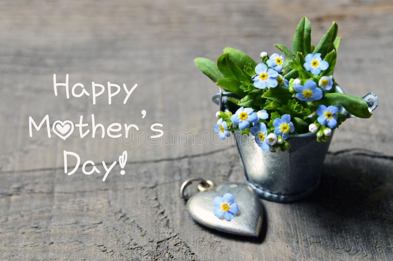 日愉快的母亲s 勿忘草在小金属桶和葡萄酒银色心脏开花在老木桌上 免版税库存图片