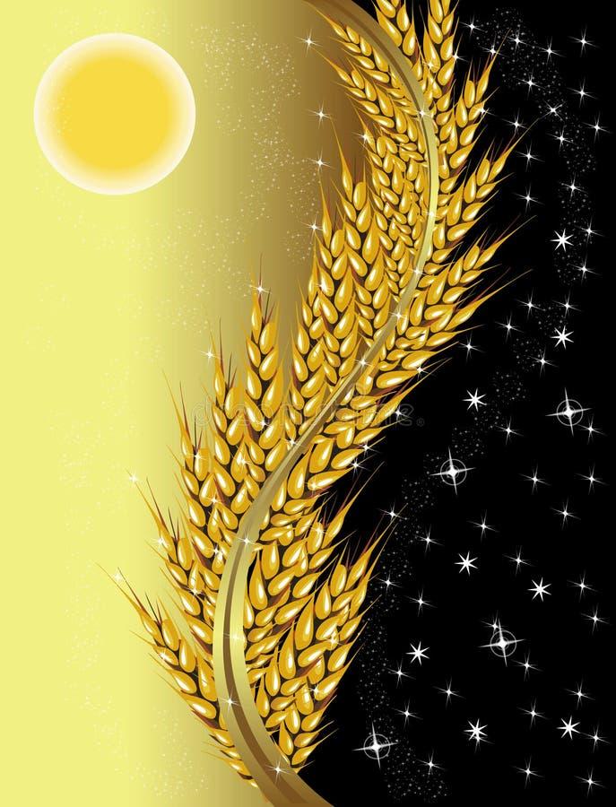 日晚上麦子 皇族释放例证