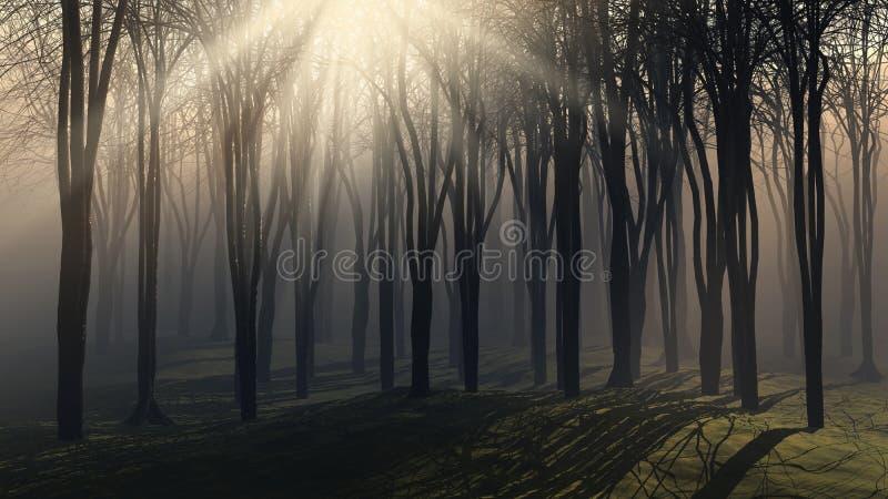 日有雾的结构树 皇族释放例证