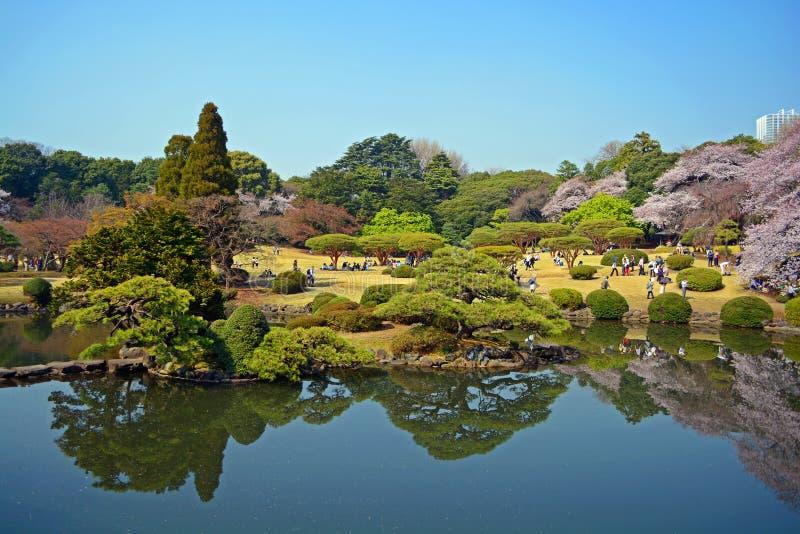 日本公园#2 免版税库存照片