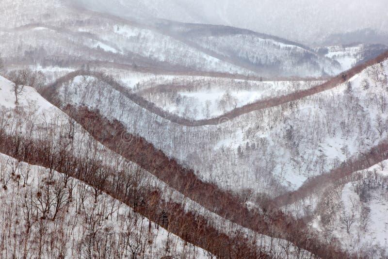 日本冬季风景,山林林雪 劳苏山位于北海道根室支府门市区 免版税图库摄影