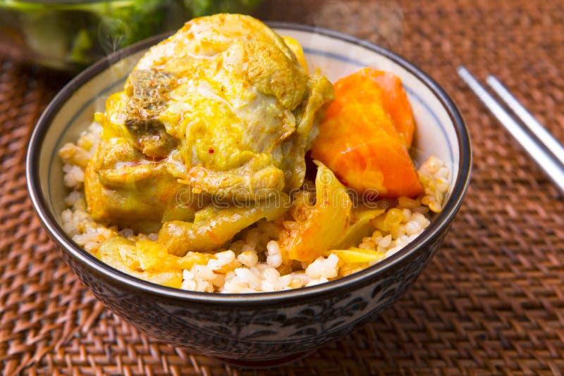 日本咖喱饭,红萝卜,土豆,葱,鸡 库存图片