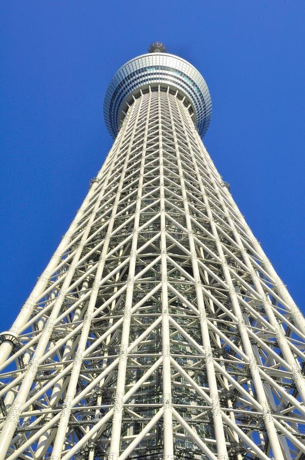 日本天空sumida东京塔结构树病区 免版税图库摄影