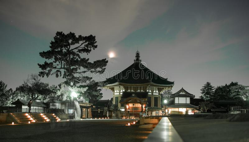 日本奈良在pasrk的光节日 免版税库存图片