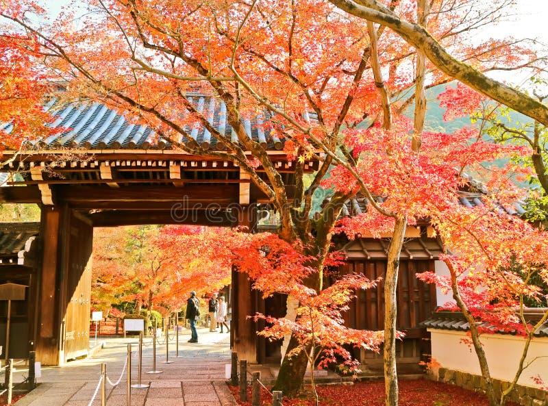 日本寺庙的看法在秋天在京都,日本 库存图片