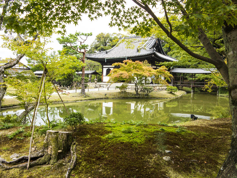 日本庭院和池塘 免版税库存图片