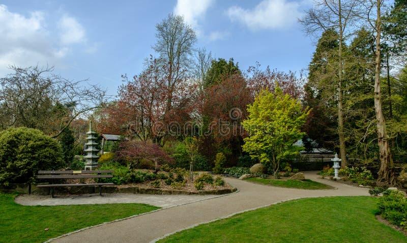 日本庭院和道路 库存图片