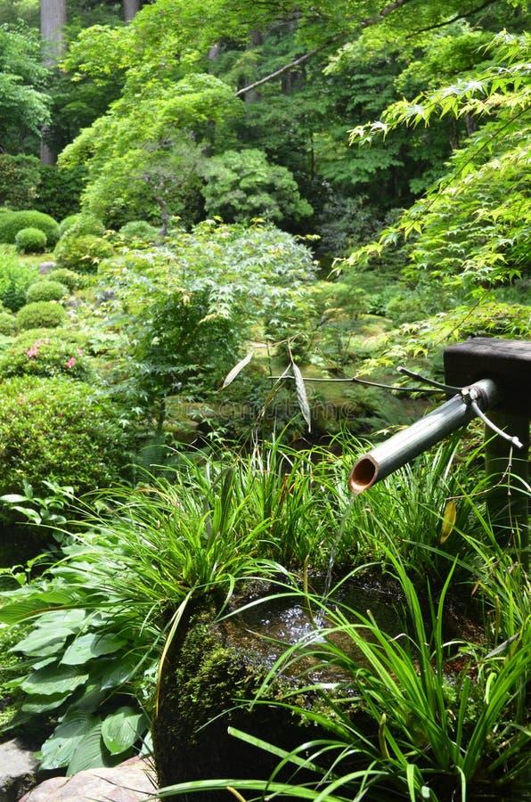 日本庭院喷泉 免版税库存照片