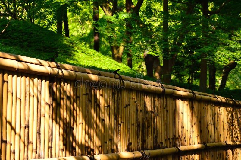 日本庭院,京都日本竹篱芭  库存图片