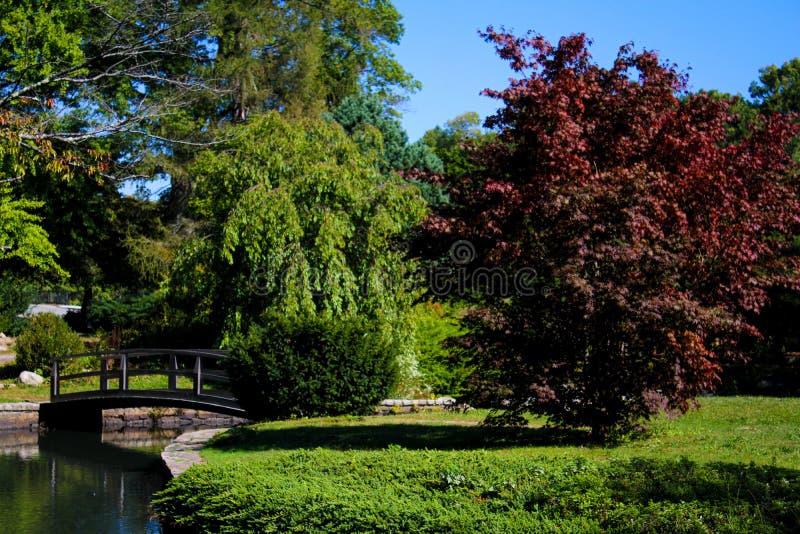 日本庭院,罗杰威廉斯公园 免版税库存照片