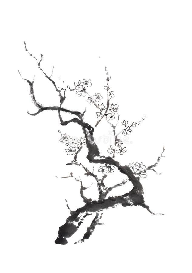 日本式sumi-e开花的洋李墨水绘画 免版税库存照片