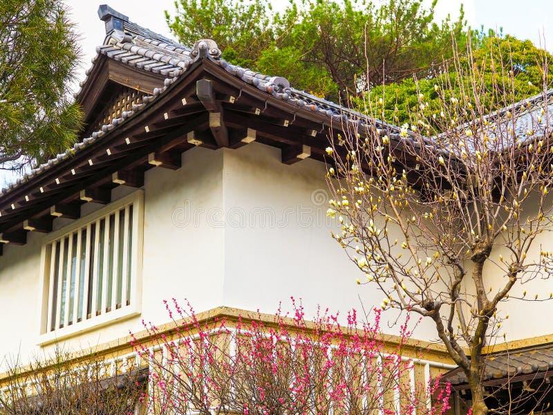 日本春天在桃红色和白色在背景中进展与传统日本房子 免版税图库摄影