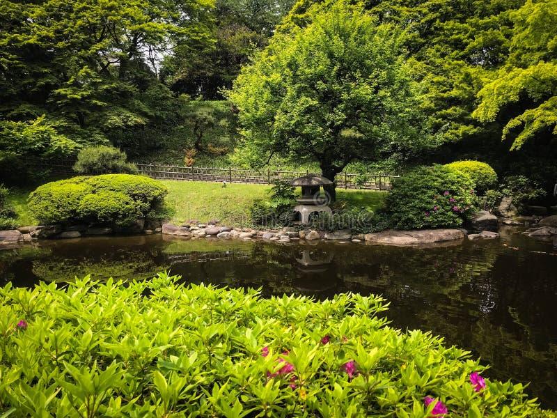 日本暗藏的庭院 免版税库存照片
