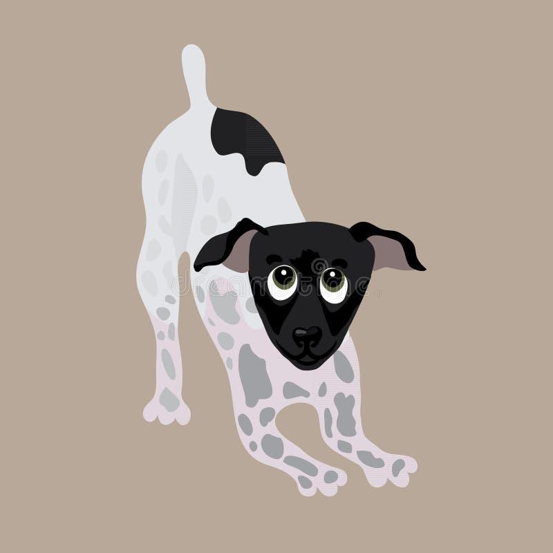 日本狗 狗的传染媒介例证 库存例证