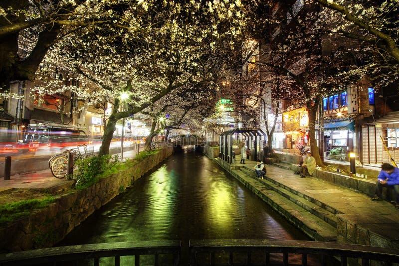 日本的樱花季节在京都在每年3月上旬,日本 免版税库存照片