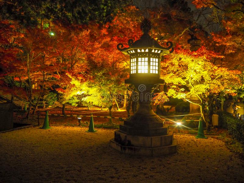 日本石灯笼迷人的场面在五颜六色的槭树背景发光在夜间 免版税库存图片