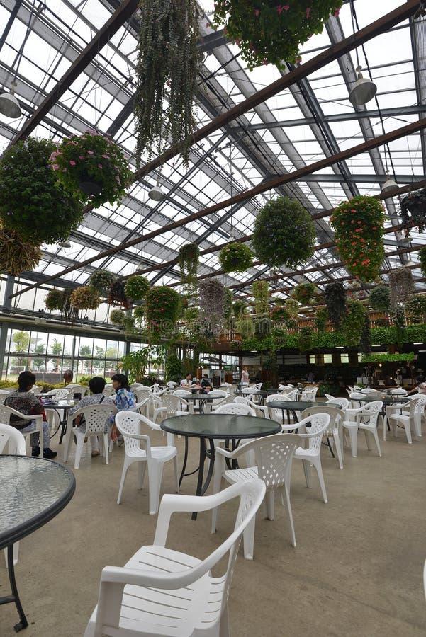 日本神户天窗餐馆设计 图库摄影