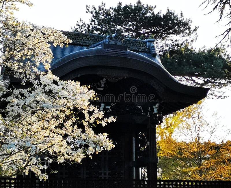日本神道圣地,塔 图库摄影