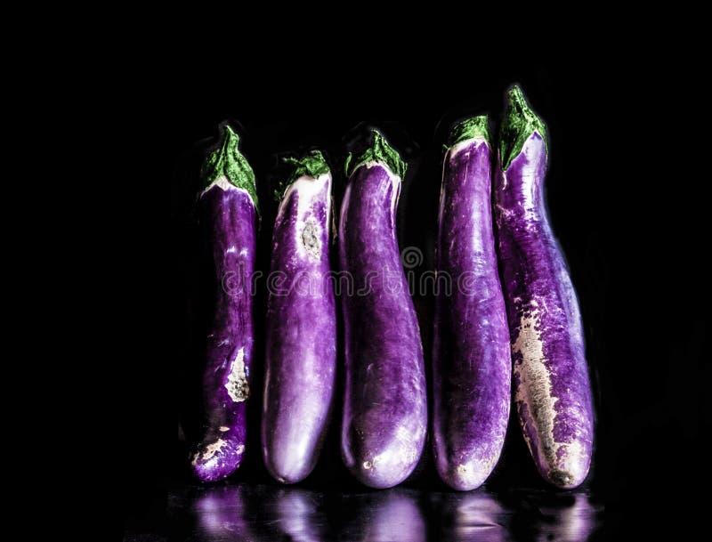 日本紫色茄子 免版税库存照片