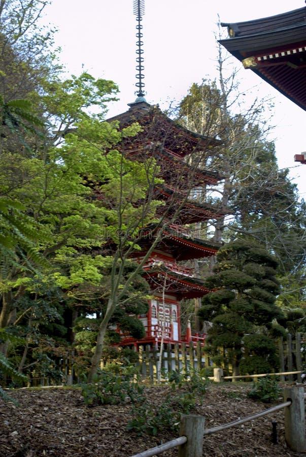 日本茶园塔 库存照片