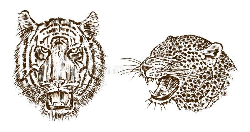 日本野生老虎和动物豹子 亚洲野生猫 头或面孔外形  纹身花刺艺术品 刻记手拉  向量例证