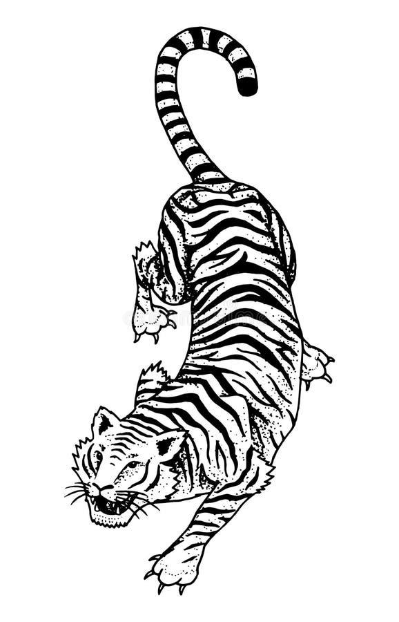 日本野生老虎 亚洲猫 顶视图 时尚补丁 女孩的纹身花刺艺术品 刻记手拉在老葡萄酒 库存例证