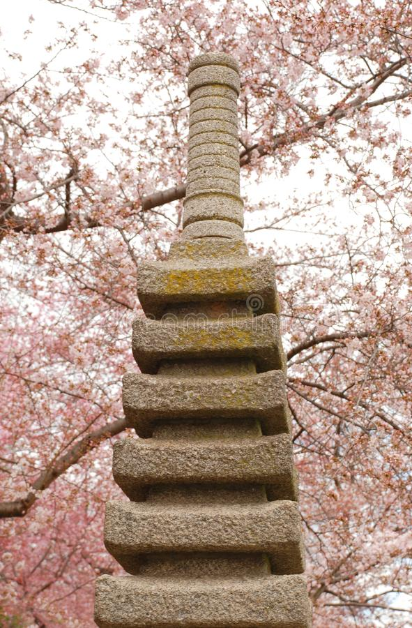 日本雕象和樱花在华盛顿D C 免版税库存照片