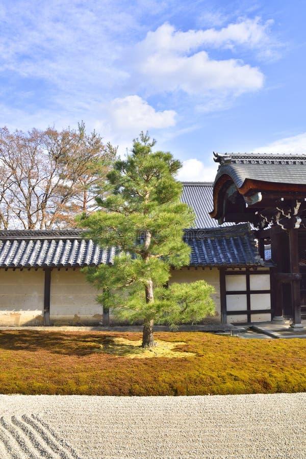 日本青苔庭院 免版税库存图片