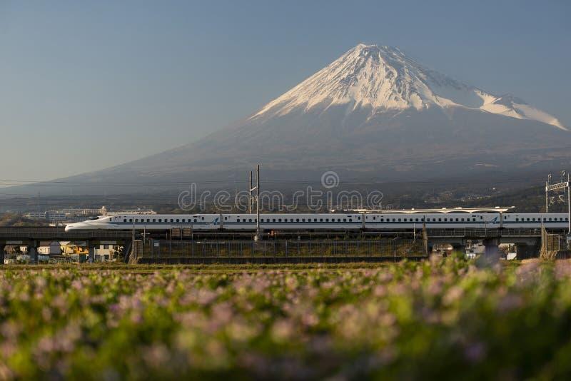 日本高速火车和富士山在背景中 库存图片