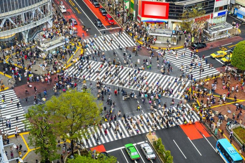 日本shibuya东京 库存图片