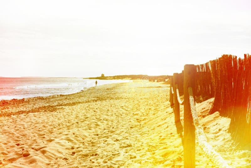 日落与剧烈的天空和飞行海鸥的海滩场面 免版税库存照片