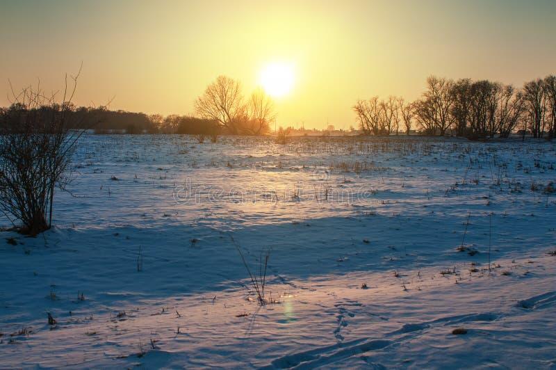 日落与草甸和森林的冬天风景在汉堡附近的格斯塔特 免版税图库摄影