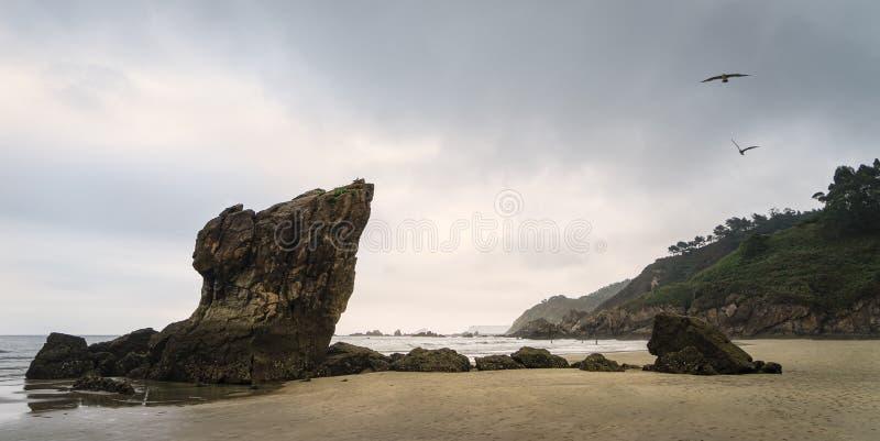 日落低潮时Playa del Aguilar全景 图库摄影