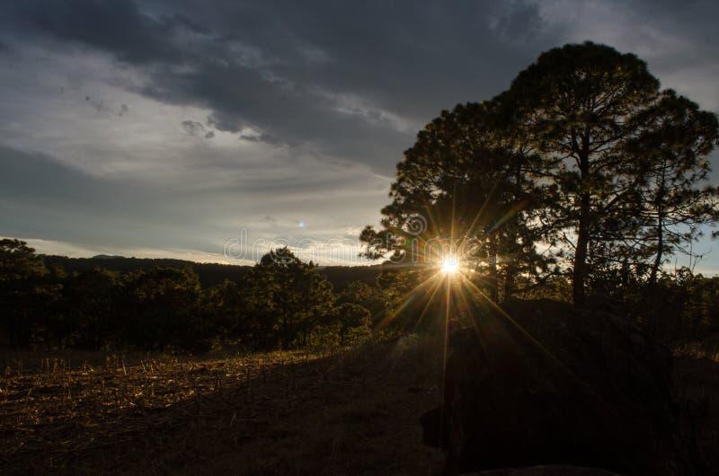 日落值得丢失的时间 免版税库存照片