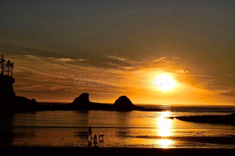 日落和剪影在俄勒冈海滩 库存图片