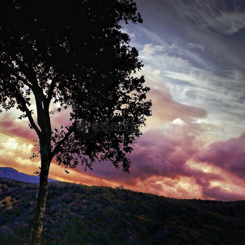 日落和剪影在农村 免版税库存图片