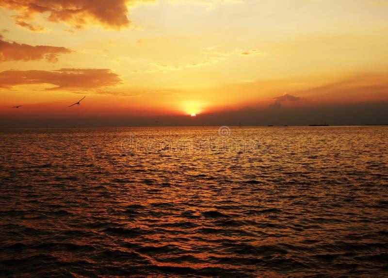 日落和橙色天空 免版税图库摄影