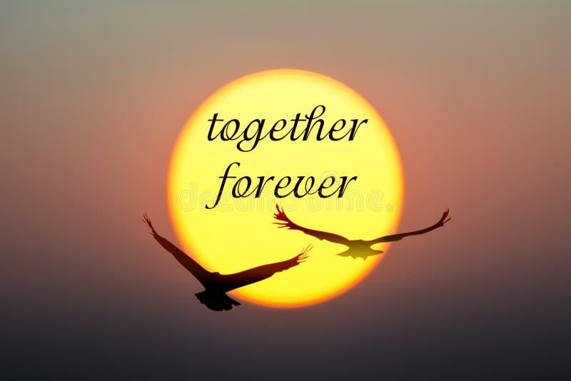 日落和鸟与一起永远文本 免版税库存图片