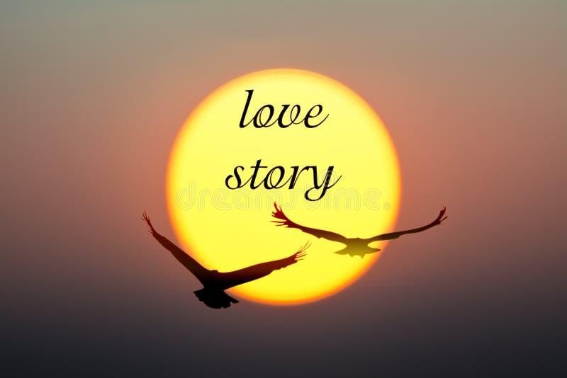 日落和鸟与爱情故事文本 库存照片