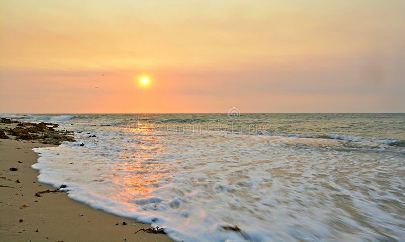 日落和Seaspray 免版税库存照片
